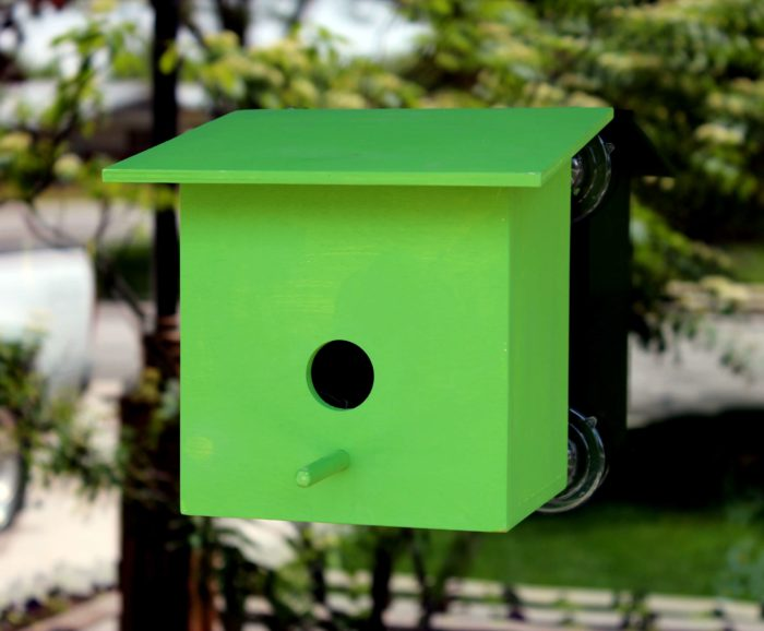 A woodworking plan for building four bird structures