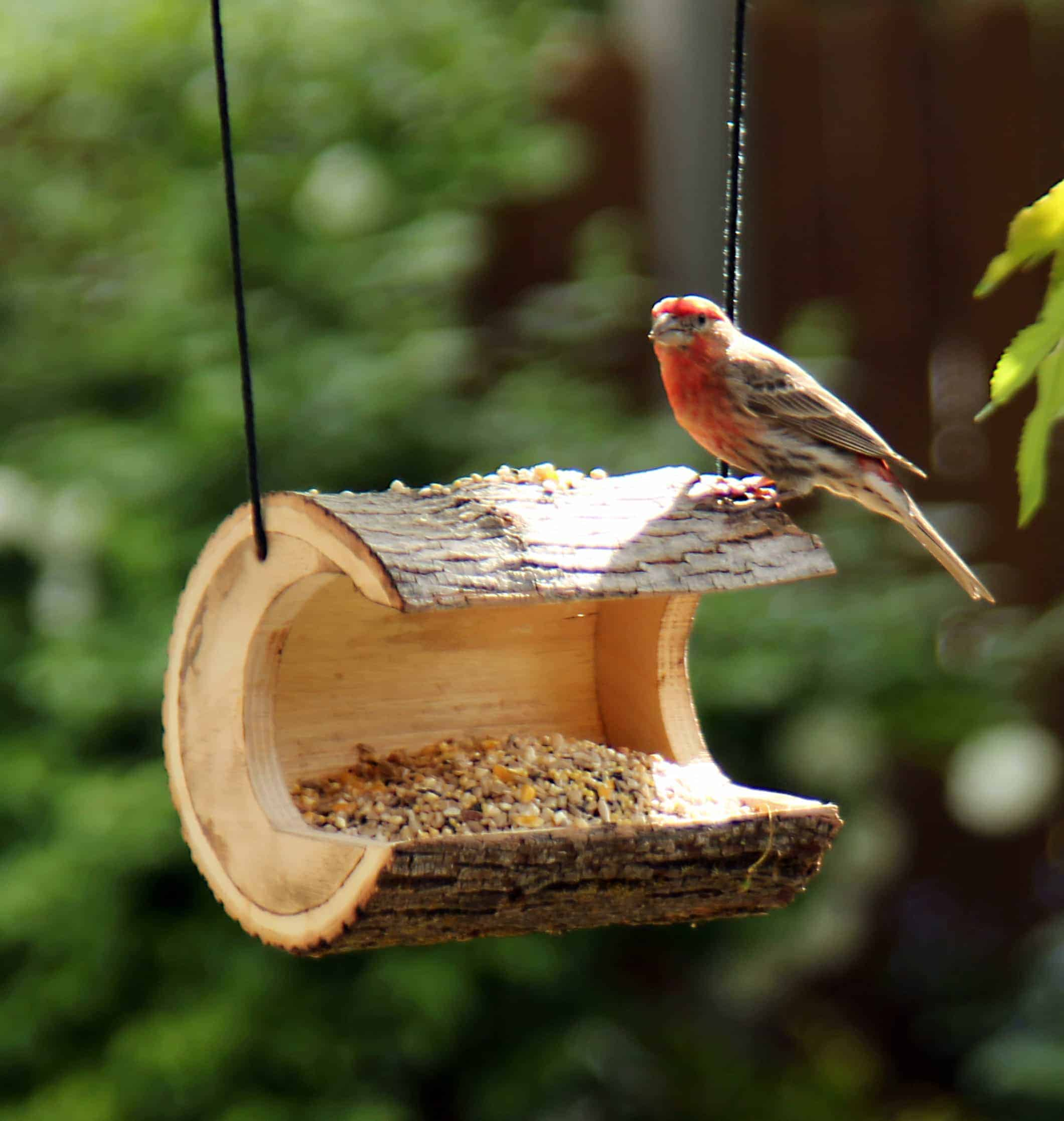 Log feeder from a woodworking plan for four bird items