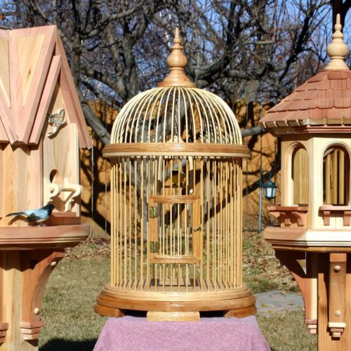Woodworking plan for a bird house, bird feeder and bird cage