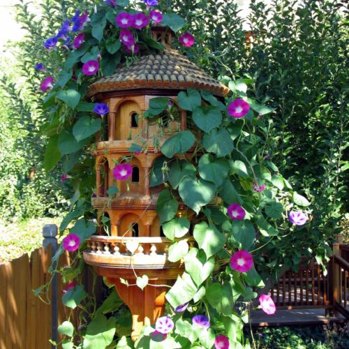 Woodworking plan with patterns for building the Italian Colony Birdhouse