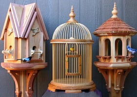 Woodworking plans to build a feeder, cage and house
