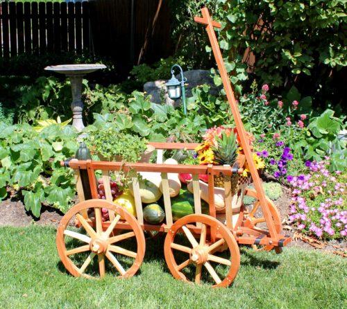 Garden Cart with fruit display woodworking plan